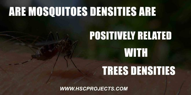 mosquitoes Densities Are Positively Correlated With Tree Densities, Mosquitoes Densities Are Positively Correlated With Tree Densities, HSC Projects, HSC Projects