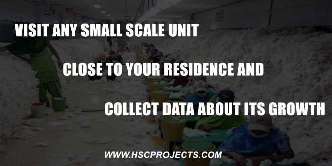 Visit Any Small Scale Unit Close To Your Residence And Collect Data About Its Growth, Visit Any Small Scale Unit Close To Your Residence And Collect Data About Its Growth, HSC Projects, HSC Projects