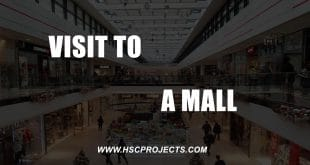 , Business Studies Project Class 11 – Visit to a mall, HSC Projects, HSC Projects