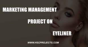 pinciples Of Management Project On McDonald's, Principles Of Management Project On McDonald's, HSC Projects, HSC Projects