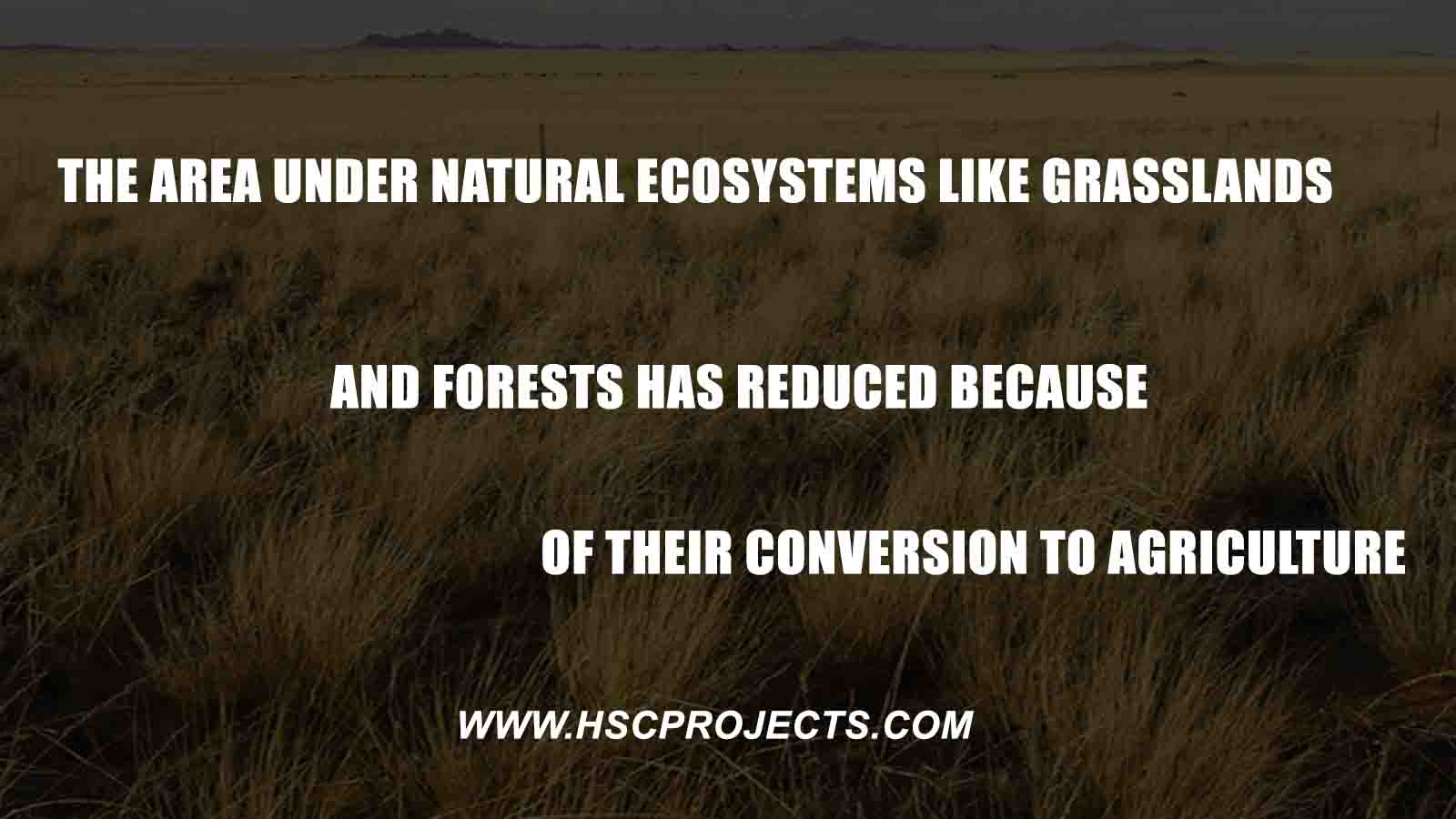 , The Area Under Natural Ecosystems like Grasslands and Forests has Reduced Because of Their Conversion to Agriculture, HSC Projects, HSC Projects