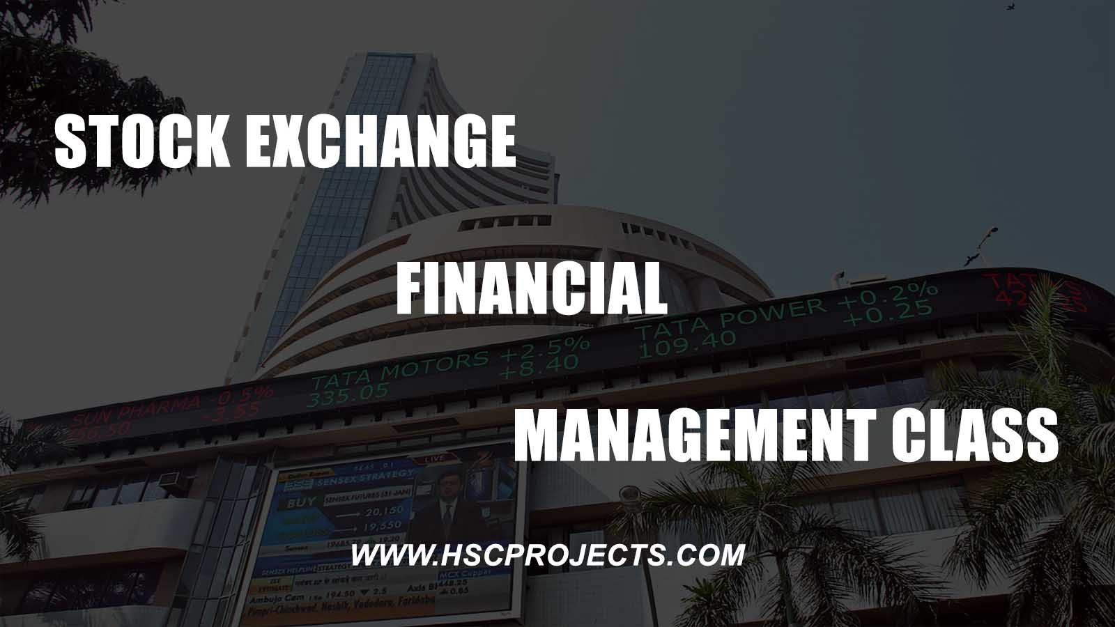 , Project on Stock Exchange Financial Management Class 12 CBSE, HSC Projects, HSC Projects